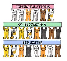 Congratulations on becoming a big sister. by KateTaylor