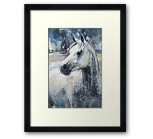 The Young Grey  Framed Print