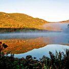 Soft Morning Light --- Basin Pond by T.J. Martin