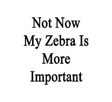 Not Now My Zebra Is More Important  Photographic Print