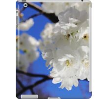 Irish Spring2 iPad Case/Skin