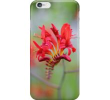 Red Summer Flowers iPhone Case/Skin