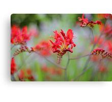Red Summer Flowers Canvas Print