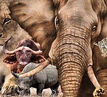 """A COLLAGE OF AFRICA'S """"BIG 5"""" -  by Magaret Meintjes"""