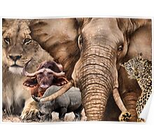 """A COLLAGE OF AFRICA'S """"BIG 5"""" -  Poster"""