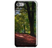 A Woodland Path iPhone Case/Skin
