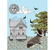 Dog House Photographic Print