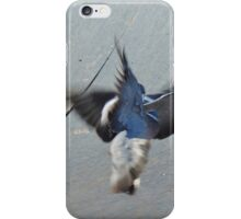 pigeon fight iPhone Case/Skin
