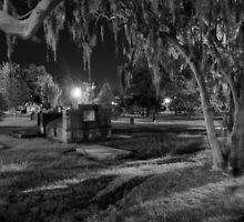 Savannah - Bonaventure Cemetery 003 by Lance Vaughn
