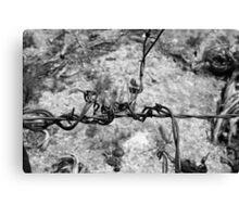 Twisted Wire Canvas Print