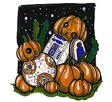 Pumpkin bots! Photographic Print
