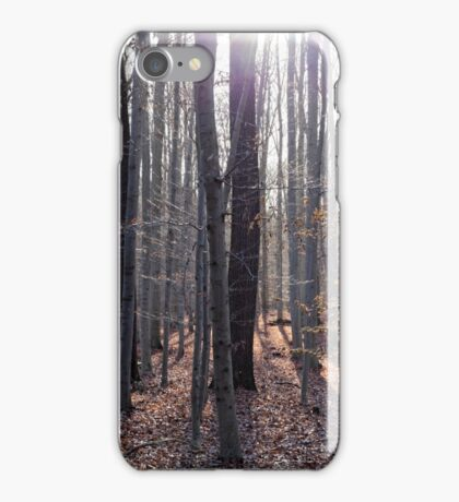A beech forest with sunlight in fall. iPhone Case/Skin