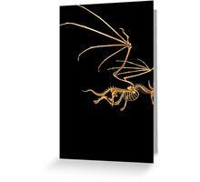 Flying Bone Dragon T Shirt Greeting Card