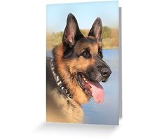 Bruzer Greeting Card