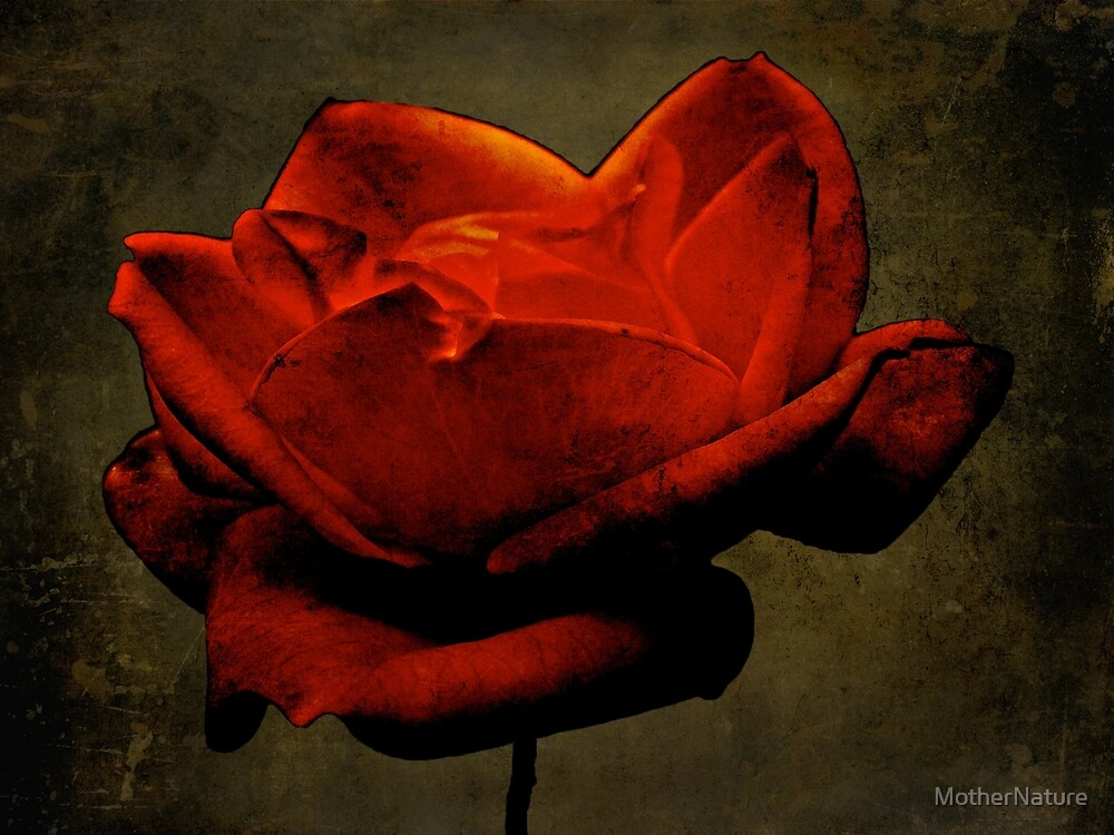 Enigma Of The Yellow Rose #1 by MotherNature