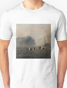 Black and White Striped Cows in Pasture Unisex T-Shirt