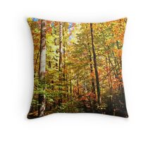 Follow Me... Throw Pillow
