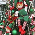CHRISTMAS ELVES by Pauline Evans