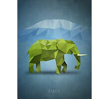 Polygon Elephant Photographic Print
