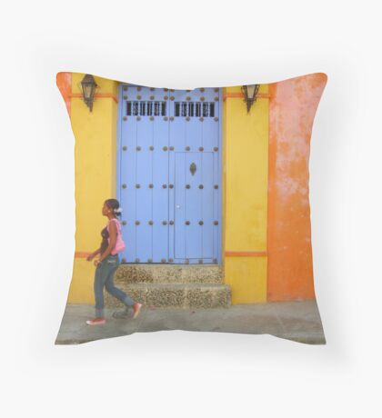 Colonial Style with Colorful Touch Throw Pillow