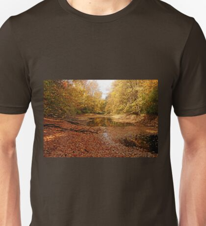 Autumn Beauty At The Pond Unisex T-Shirt