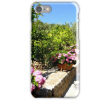 The Rose And Hydrangea Path iPhone Case/Skin