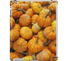 Pint-Sized Pumpkins iPad Case/Skin
