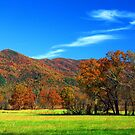AUTUMN MORNING,CADES COVE by Chuck Wickham