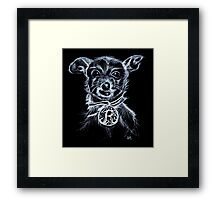 Roxy ChihuahuaTerrier Framed Print