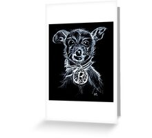 Roxy ChihuahuaTerrier Greeting Card