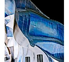 gehryscape Photographic Print
