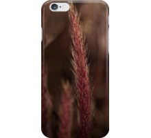 Burgundy purple fountain grass iPhone Case/Skin