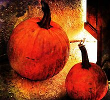 PUMPKINS by MichaelDTaylor