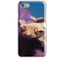 Crested gecko iPhone Case/Skin