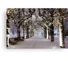 Narnia Corridor Canvas Print