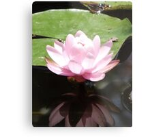 Reflection of the Divine Metal Print