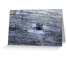 Face on the Wall Greeting Card