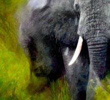 Uganda: Slick Ivory Sticker