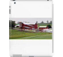 Amish Farm in Rural Ohio iPad Case/Skin