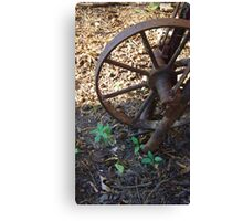 Birth and Decay Canvas Print