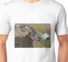 Fencing Lizard Unisex T-Shirt