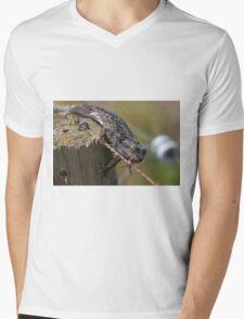 Fencing Lizard Mens V-Neck T-Shirt