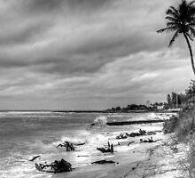 Winter Shore by njordphoto