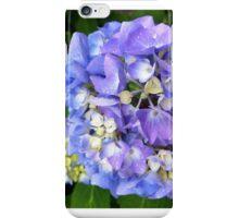 Purple and blue hydrangea iPhone Case/Skin