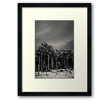 Captures of Nature I Framed Print