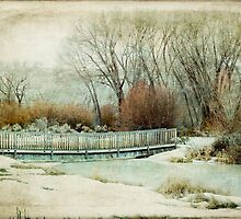 Winter Days by Fran Riley