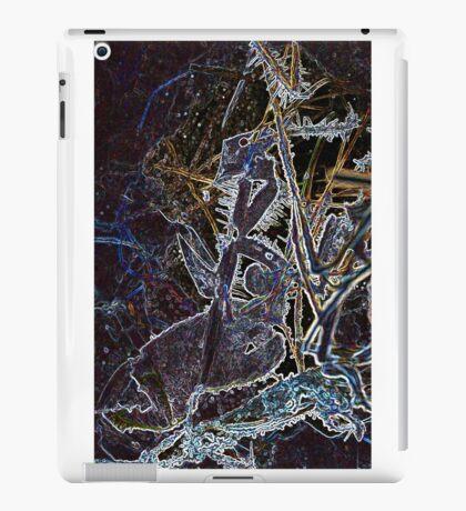Icescape V iPad Case/Skin