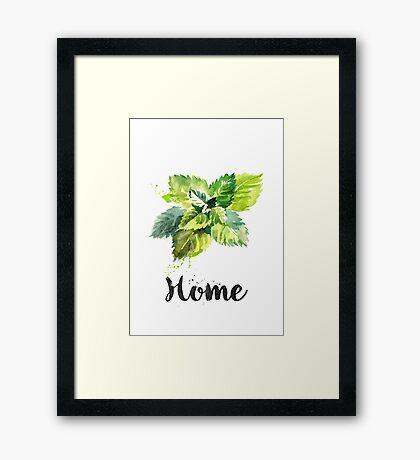 Mint. Home Framed Print