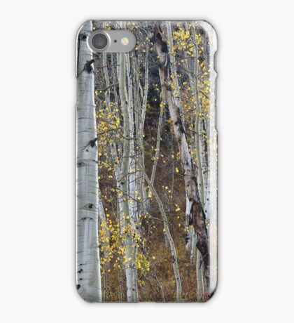 Final Few Leaves Hanging on iPhone Case/Skin