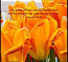 Bible Verse Isaiah 40:8 by DianaBozart